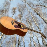гитара и осень :: Евгений Фролов