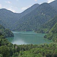 Озеро Рица :: pich