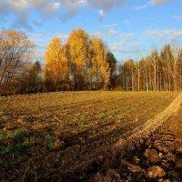 Осенней грусти торжество. :: mike95