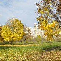 Осенние дни. :: Александр Атаулин