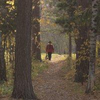 Живём среди леса. Дама на прогулке. :: Ольга