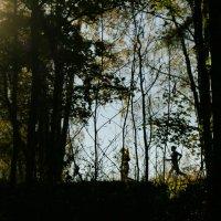 Осенний марафон. :: сергей лебедев