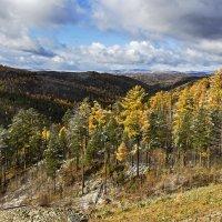 Осенний лес :: Анатолий Иргл