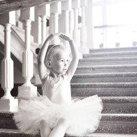 Маленький лебедь :: Яна Спирина