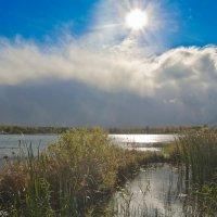 Осенним днём на Лебяжьем озере. :: Виктор Евстратов