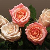 Букет роз :: Эля Юрасова