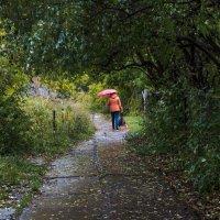 Вот и осень... :: Сергей Щелкунов