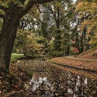 об осенних парках :: Olena
