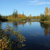 На берегу извилистой реки :: Надя Жукова