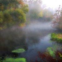 Утро туманного сентября....2. :: Андрей Войцехов