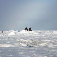 На завалинке (фото сделано в географической точке Северного Полюса) :: Tatiana Belyatskaya