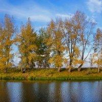 Осенний смотр :: Виктор Четошников