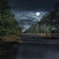Moonlight :: Evgeny St.