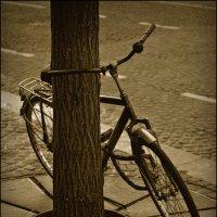 Одиночество :: Алексей Соминский