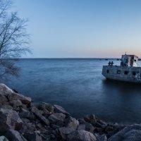 Корабль и дерево. :: Григорий Храмов