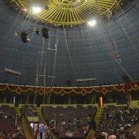 цирк :: Вероника Полканова