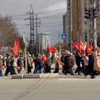 Красный пояс :: Павел Самарович