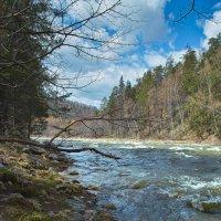 Бурный поток :: Павел Меньшиков