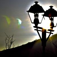 С солнцем не поспоришь. :: Андрей Асеев