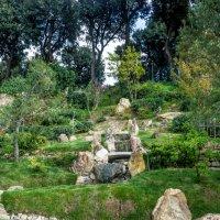 Японский сад :: Дмитрий Тырышкин