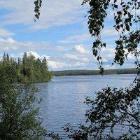 Заповедник Кутса озеро Вуориярви :: Нина северянка