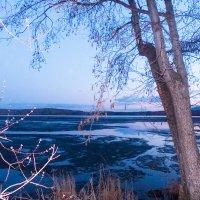 Сумерки сгустились над последним льдом.... :: Светлана Игнатьева