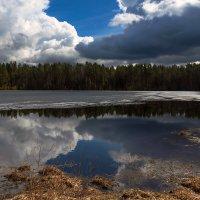 Весна :: Владимир Миронов