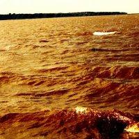 Gulf :: Андрей Малик