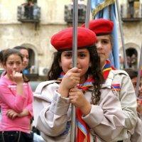 Пасхальное шествие в Иерусалиме :: Вадим Шульц