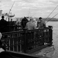 Рыбаки :: Максим Гришков