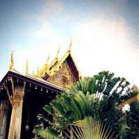 Таиланд :: Катерина Пушенкова