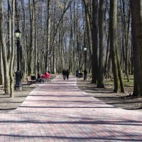 В парке :: Владимир Белов