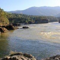 Слияние двух рек,Чемал и Катунь! :: Светлана Субботина