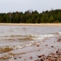 Финский залив :: Валерия заноска