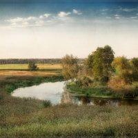 Подмосковный пейзаж :: Дмитрий Motorin