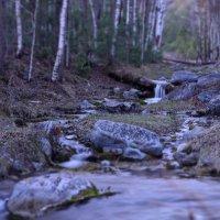 лесной ручеёк :: Леонид Андреев