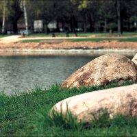 Городские камни :: Алексей Соминский