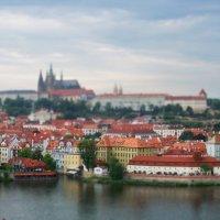 Прага, вид на Старый Град :: Таня Щеголева