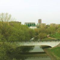 Вид с Миллионного моста :: Анастасия Лазарева