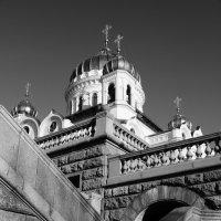 Москва. Храм Христа Спасителя.25.02.2013г. :: Виталий Виницкий