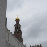 У стен Новодевичьего монастыря :: Маера Урусова