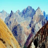 В горах Алтая :: Татьяна Борзова