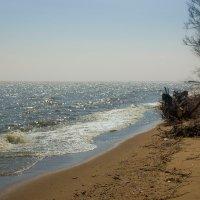 Волна :: Алина Подлесных