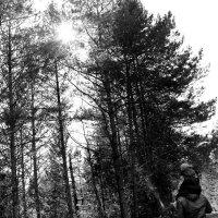 в лесу :: Ольга Белёва