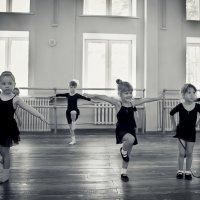 балерины :: Наталья Коледа
