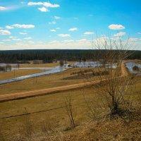 Весенний пейзаж3 :: Ольга Белёва
