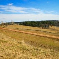 Весенний пейзаж :: Ольга Белёва