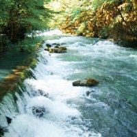 Абхазия страна горных рек :: Татьяна Гордеева
