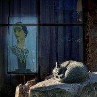 Спящий на пне :: Георгий Столяров