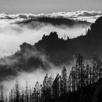 Над облаками... :: Sergey Sergeev